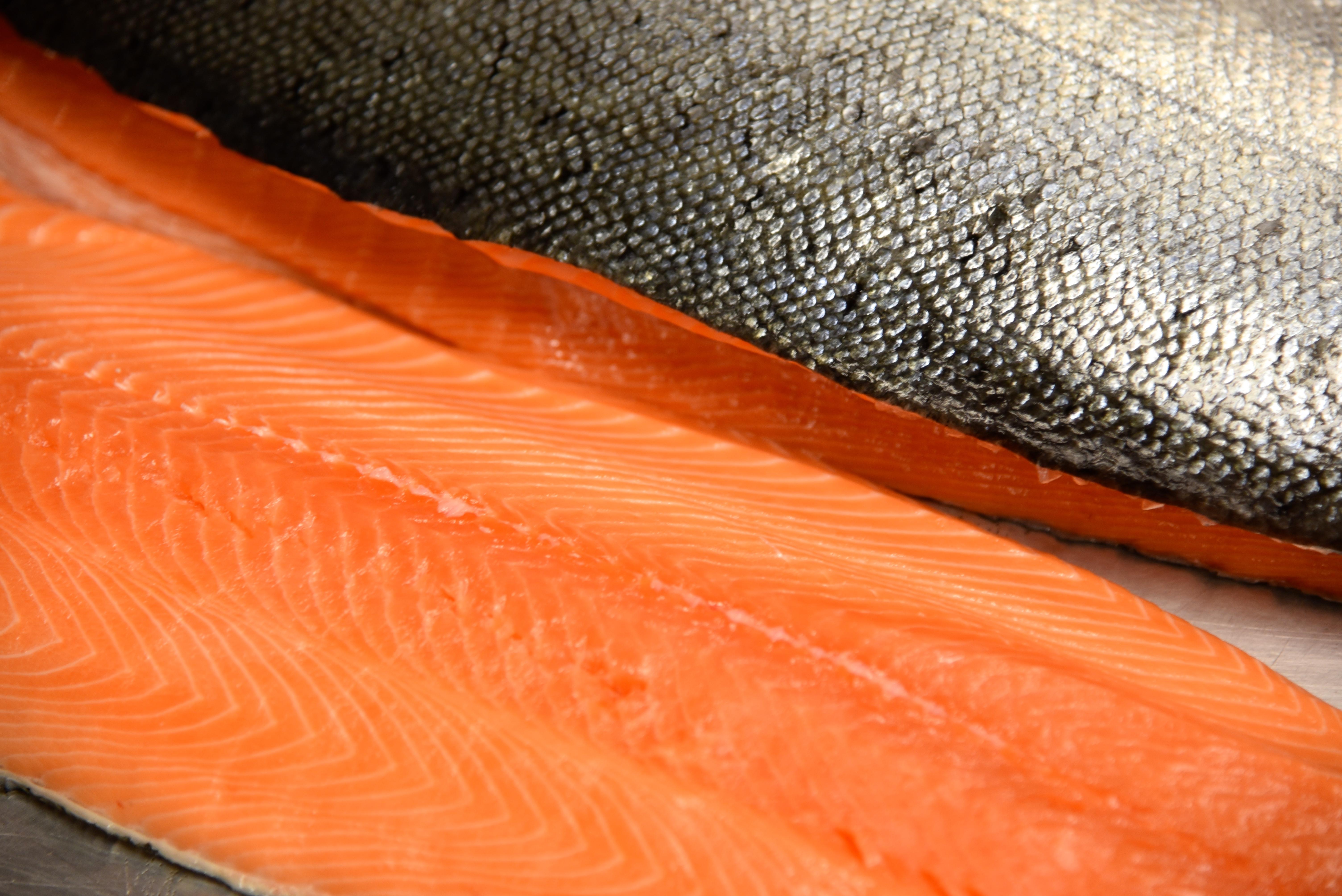 Seattle's ubiquitous salmon